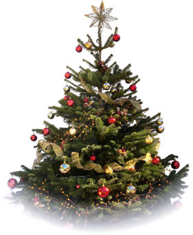 Decorated christmas trees london christmas trees decorated - Sapin de noel decore ...